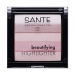 Beautifying Highlighter (Sante)