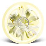 Moringa - Body Butter (The Body Shop)